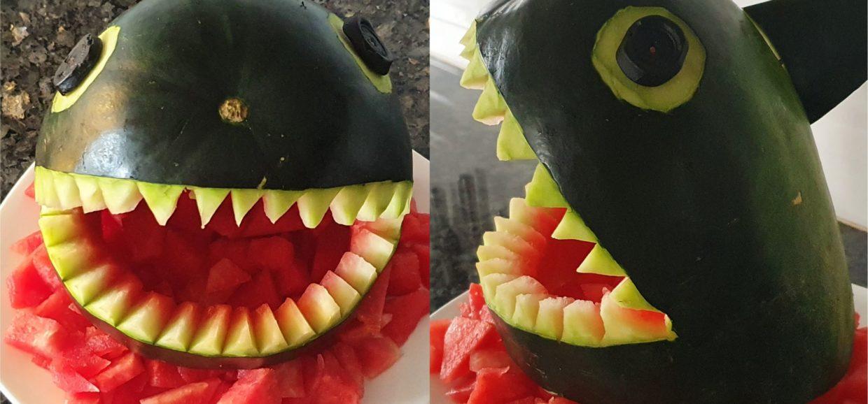 Watermelon shark